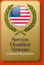 Service DisabledVeteran  Owned Business